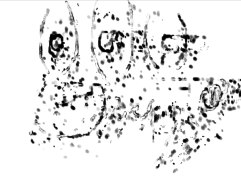 Excerpt '3:47' Trying to Write Silenzio (o)', software, 2013