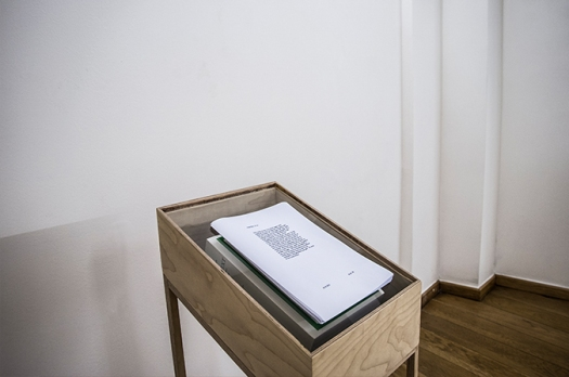 'Pretext' installation view Emergent Gallery, 2015