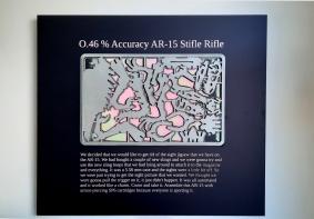 0.46% Accuracy AR-15 Stifle Rifle, 80 x 60cm